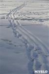 Зимняя сказка Платновского парка, Фото: 12