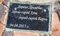 Тульская сакура зацвела в Керчи, Фото: 4