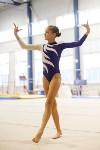 Спортивная гимнастика в Туле 3.12, Фото: 175