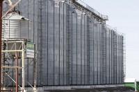 Алексей Дюмин обсудил с тульскими сельхозпроизводителями развитие молочного животноводства, Фото: 17
