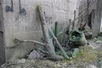 Прорыв канализации на улице Столетова, Фото: 8