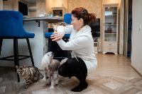 Экзотические животные в квартире, Фото: 18