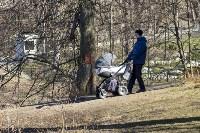Солнечный день в Белоусовском парке, Фото: 43