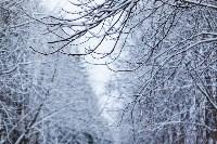 Тула после снегопада. 23.12.2014, Фото: 32