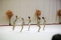 """Соревнования по художественной гимнастике """"Осенний вальс"""", Фото: 130"""