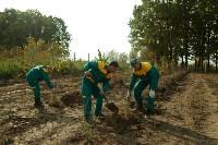 Высадка деревьев на территории бывшей судаковской свалки, Фото: 5