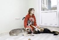 Пристроенные домашние животные, Фото: 15