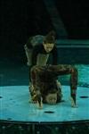 Aqua Show в Тульском цирке, Фото: 14