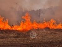 В Федоровке огонь с горящего поля едва не перекинулся на дома, Фото: 14