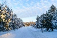 Снежное Поленово, Фото: 14