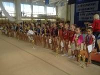 Туляки на соревнованиях по спортивной гимнастике в Брянске., Фото: 16