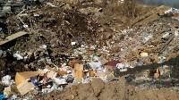 В Туле на берегу Тулицы обнаружен незаконный мусорный полигон, Фото: 12