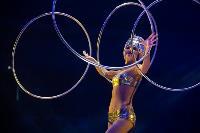 Шоу фонтанов «13 месяцев»: успей увидеть уникальную программу в Тульском цирке, Фото: 81