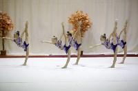 """Соревнования по художественной гимнастике """"Осенний вальс"""", Фото: 137"""