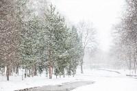 Мартовский снег в Туле, Фото: 74