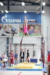 Соревнования по спортивной гимнастике на призы Заслуженных мастеров спорта , Фото: 41