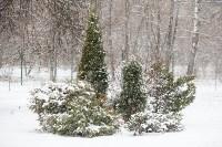 Мартовский снег в Туле, Фото: 73