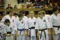 Открытое первенство и чемпионат Тульской области по сётокану, Фото: 3