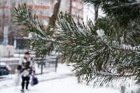 Мартовский снег в Туле, Фото: 96