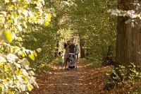 Золотая осень в Тульской области, Фото: 15