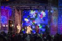 В Туле завершились новогодние гуляния, Фото: 5