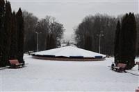 Каток в Центральном парке. Январь 2014, Фото: 6