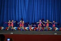 Открытый Чемпионат Тульской области по черлидингу, Фото: 3