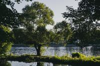 Летний день в богородицком парке, Фото: 35