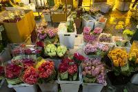 Миллион разных роз: как устроена цветочная теплица, Фото: 57