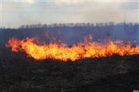 Сразу в нескольких районах Тульской области загорелись поля, Фото: 8