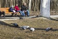 Как туляки весну встречают?, Фото: 30