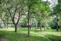 Яблоневый сад и роща на ул. Серова, Фото: 7