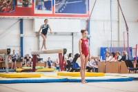 Первенство ЦФО по спортивной гимнастике, Фото: 46