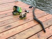 В пруду Центрального парка работала водолазная группа, Фото: 8