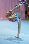 Соревнования по художественной гимнастике 31 марта-1 апреля 2016 года, Фото: 59