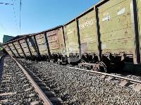 В Тульской области грузовой поезд сошел с рельсов, Фото: 26