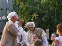 Выступления театра «Эрмитаж» в Туле, Фото: 28