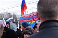 В Туле прошел митинг в поддержку Крыма, Фото: 12