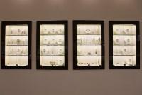 Сеть салонов «Бриллиантовая рука», Фото: 17