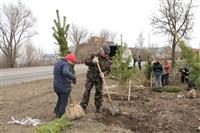 Высадка деревьев в Мясново, 4 апреля 2014 г., Фото: 1
