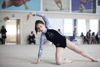 Соревнования по спортивной гимнастике на призы Заслуженных мастеров спорта , Фото: 40