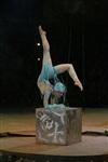 В Тульском цирке прошла премьера аква-шоу, Фото: 9