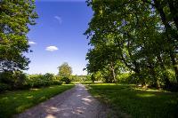 Летний день в Ясной Поляне, Фото: 9