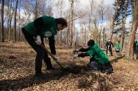 Посадка деревье в Ясной Поляне. 17.04.2015, Фото: 19