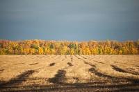 Золотая осень в Тульской области, Фото: 40