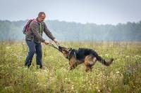 Международная выставка собак, Барсучок. 5.09.2015, Фото: 19