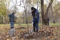 Высадка деревьев в Рогожинском парке, Фото: 12