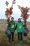 В музее-заповеднике «Куликово поле» высадили 6 тысяч деревьев, Фото: 14