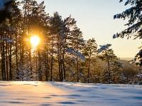 Снежное Поленово, Фото: 50