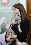 Выставка кошек в Туле, Фото: 67